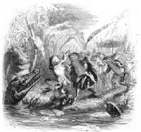 Солнце и Лягушки (Гранвиль)