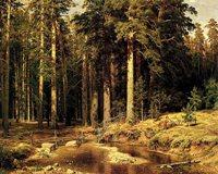 Пейзаж И. И. Шишкина