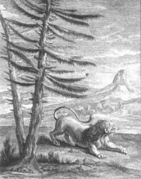 Лев и Комар (Ж. Удри)