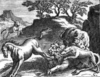 Лев состарившийся (Ф. Шово)