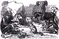 Мор зверей (К. Жирарде)