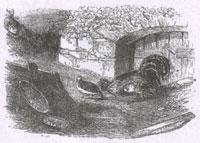 Куропатка и Петухи (Ж. Давид)