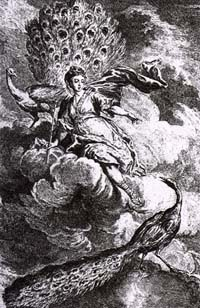 Павлин, жалующийся Юноне (Удри)