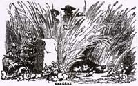Жаворонок с Птенцами и Землевладелец (К. Жирарде)