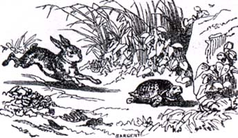 Заяц и Черепаха (К. Жирарде)