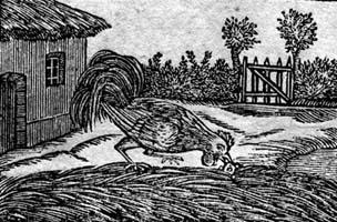 Петух и Жемчужное Зерно