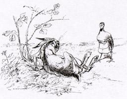 Заяц и Куропатка (Вимар)