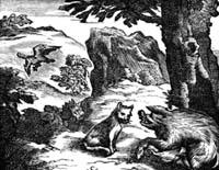 Орел, Дикая Свинья и Кошка (Ф. Шово)