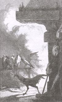 Сокол и Каплун (Е. Ламберт)