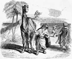 Верблюд и плывущие Поленья (Гранвиль)