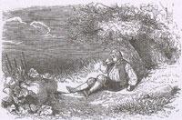 Желудь и Тыква (Ж. Давид)