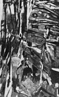 Жан Базен. Обтесанные скалы. 1955