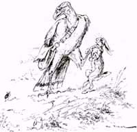 Орлица и Жук (Вимар)