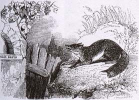 Лисица и Виноград (Ж. Давид)