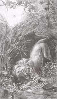 Лев и Комар (Е. Ламберт)