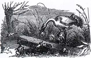 Лягушки, просящие Царя (К. Жирарде)