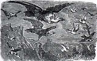 Коршуны и Голуби (К. Жирарде)
