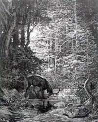Олень и его отражение (Г. Доре)