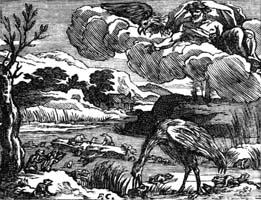 Лягушки, просящие Царя (Ф. Шово)