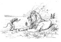 Лев, Обезьяна и два Осла (де Вимар)