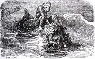 Обезьяна и Дельфин