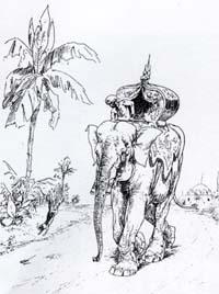 Крыса и Слон (Вимар)