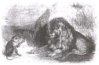 Лев, Обезьяна и два Осла (Ж. Давид)