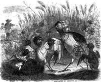 Жаворонок с Птенцами и Землевладелец (Гранвиль)