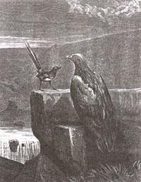 Орел и Сорока (Е. Ламберт)
