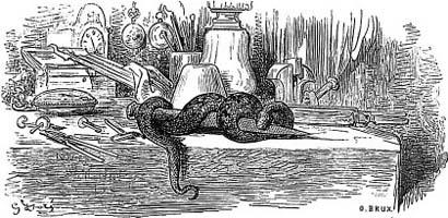 Змея и Пила