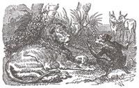 Лев, Обезьяна и два Осла (К. Жирарде)
