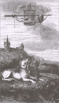 Воля и Неволя (Е. Ламберт)
