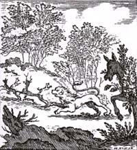 Лев и Осел на охоте (Х. Ньюмен)
