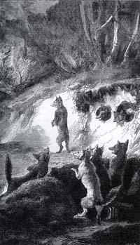 Бесхвостая Лисица (Е. Ламберт)