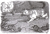 Союз Крыс (К. Жирарде)