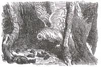 Мыши и Сова (К. Жирарде)