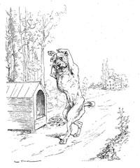 Собака с обрезанными ушами (де Вимар)