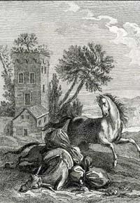 Лошадь и Осел (Удри)