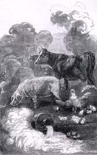Молочница и горшок с молоком (Е. Ламберт)