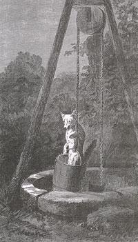 Волк и Лиса (Е. Ламберт)