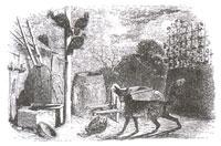 Лиса и Индюшки (Ж. Давид)