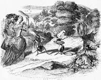 Муха и Пчела (Гранвиль)