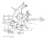 Лисица, Волк и Лошадь (де Вимар)