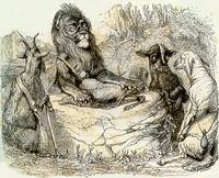 Лев на ловле (Гранвиль)