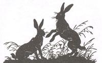 Кролики (Рисунок. XIX в.)