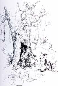 Орел, Дикая Свинья и Кошка (Вимар)