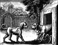 Две Собаки (Ф. Шово)