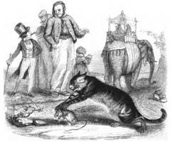 Крыса и Слон (Гранвиль)