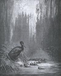Рыбы и Баклан (Г. Доре)