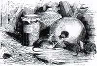 Мышь, удалившаяся от света (Ж. Давид)